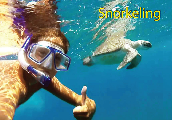 Cool Divers Latchi - snorkeling